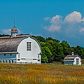 Three White Barns by Paul Freidlund