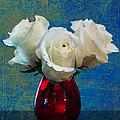 Three White Roses by Eduardo Tavares