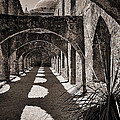 Through The Arches by Priscilla Burgers