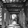 Through The Columns by Joe Geraci