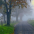 Through The Fog by Eric Albright