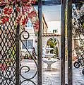 Through The Gate by Oleg Koryagin
