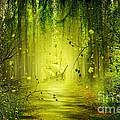 Through The Jungle by Svetlana Sewell
