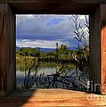 Through The Window by David Duplessie