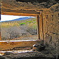 Through The Window by Stephanie Salter