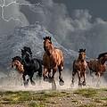 Thunder On The Plains by Daniel Eskridge