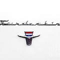 Thunderbird Tag by Jerry Fornarotto