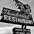 Thunderbird Utah Black And White by Benjamin Yeager