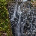 Thundering Brook Falls With Ferns by Amazing Jules