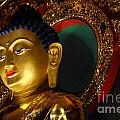 Tibetan Buddha 8 by Bob Christopher