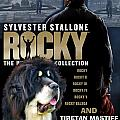 Tibetan Mastiff Art Canvas Print - Rocky Movie Poster by Sandra Sij