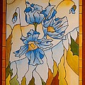 Himalayan Poppies by Kevin Braybon