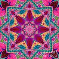 Tibetan Rose by SiriSat