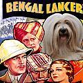 Tibetan Terrier Art - The Lives Of A Bengal Lancer Movie Poster by Sandra Sij