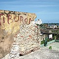 Tiburon And Basketball Court At The Top Of The Fort Wall by Heather Kirk