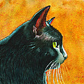 Black Cat In Profile by Rachel Armington