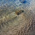 Tidal Pool 2 by Trever Miller