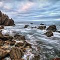 Tide Pool Little Corona Del Mar by Ryan Smith