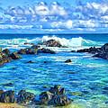 Tide Pool Near Hana Maui by Dominic Piperata
