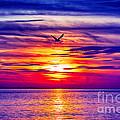 Tie Dyed Sky by Joe Geraci