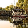 Tied Up Atchafalaya Swamp Louisiana by TN Fairey