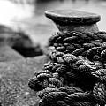 Tied Up by John Sprague