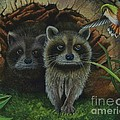 Tiffany And Raccoons by Rosellen Westerhoff