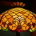 Tiffany Lamp by Denise Mazzocco