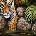 Tiger by Beth Gramith