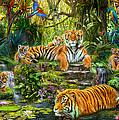 Tiger Family At The Pool by Jan Patrik Krasny