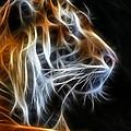 Tiger Fractal 2 by Shane Bechler