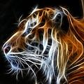 Tiger Fractal by Shane Bechler