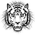 Tiger Head by Michal Boubin