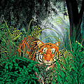 Tiger In The Jungle by Larry Ryan