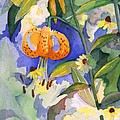 Tiger Lily In Dappled Light  by Nancy Watson