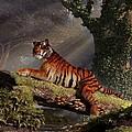 Tiger On A Log by Daniel Eskridge