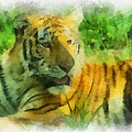 Tiger Resting Photo Art 01 by Thomas Woolworth