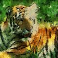 Tiger Resting Photo Art 03 by Thomas Woolworth