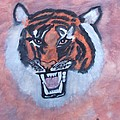 Tiger by Susan Turner Soulis