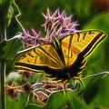 Tiger Swallowtail Digital Art by Ernie Echols