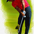 Tiger Woods - The Honda Classic by Don Kuing