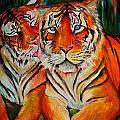 Tigers by Kali Koltz