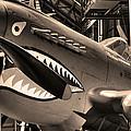 Tigershark by Mark Six