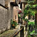 Tight Alley With Palm Trees by Mats Silvan