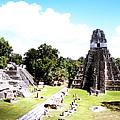 Tikal - Jaguar Temple And North Acropolis by Robert  Rodvik