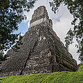 Tikal Pyramid 1b by Michael Bessler