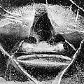 Tiki Mask Negative by Rob Hans