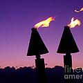 Tiki Torches by Jerome Stumphauzer