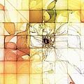 Tiled Spring by Amanda Moore