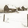 Till Dawn Farm by John Vose
